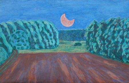 Werle, 65 x 105 , Acryl auf Textil, 2004